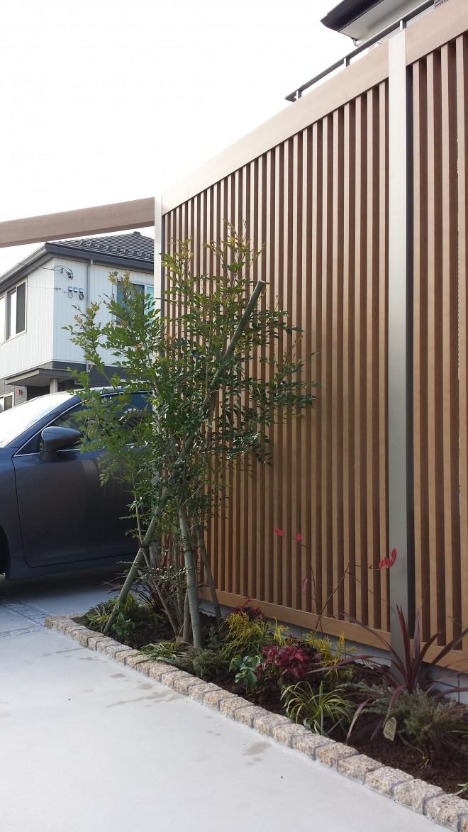 リクシル プラスG クリエラスク色+シンボルツリー シマトネリコ 埼玉県さいたま市